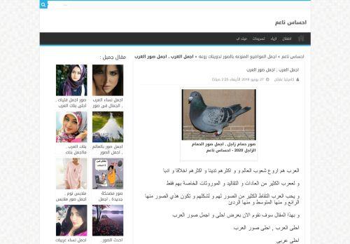 لقطة شاشة لموقع كلمات ناعمة بتاريخ 08/08/2020 بواسطة دليل مواقع تبادل بالمجان